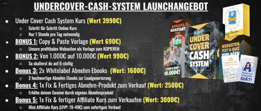 Undercover Cash System